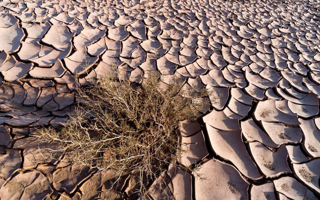 Heißester Ort der Erde – Wüste Lut