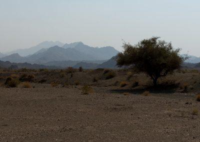 Landschaft zw. Bam und Jask
