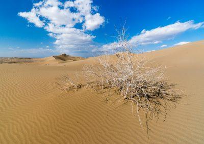 Varzaneh Dunes