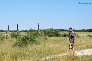 20190425 Norbert And The Giraffes Botswana DSC0578