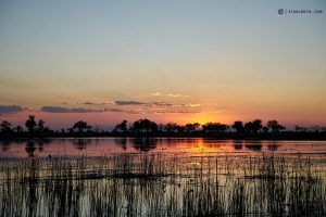 20190426 Sunset In Okavango Delta Botswana DSC0689