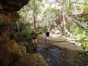 20190512 Hiking Through The Goo Moremi Gorge Botswana P5121390