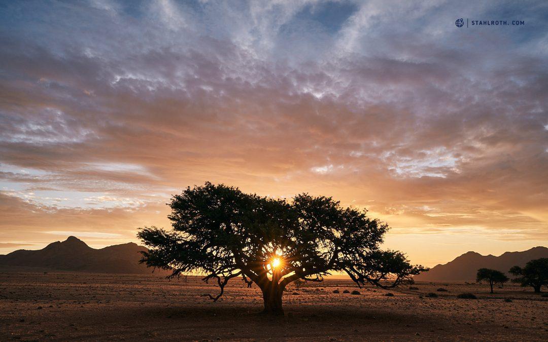 Namibia – ab in den Süden